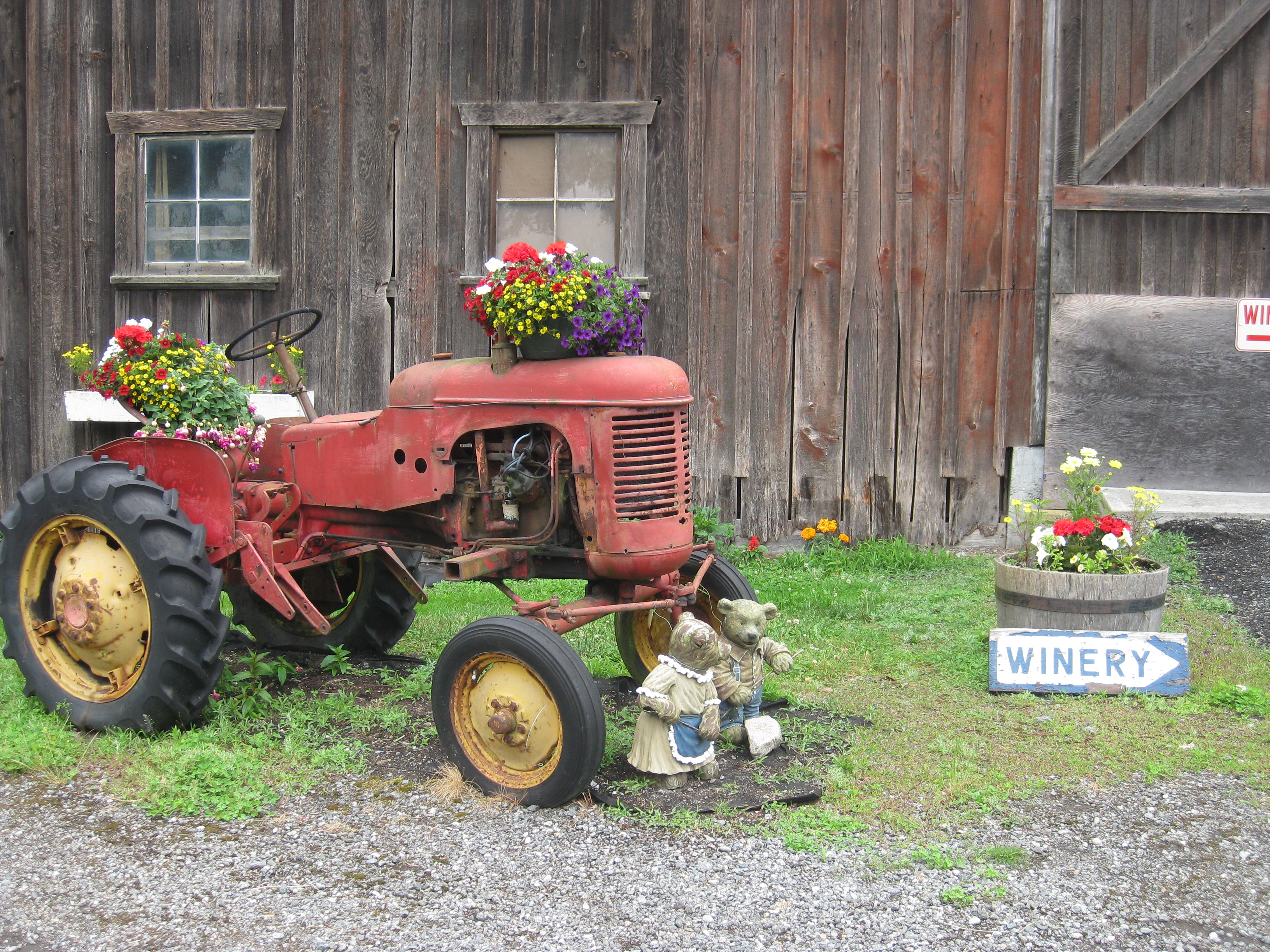 Wellbrook Winery, Delta, BC - vintage tractor